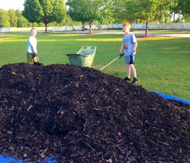 to mulch or not to mulch  an alli event, Natural flower